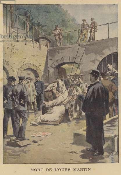 Death of Martin the polar bear (colour litho)