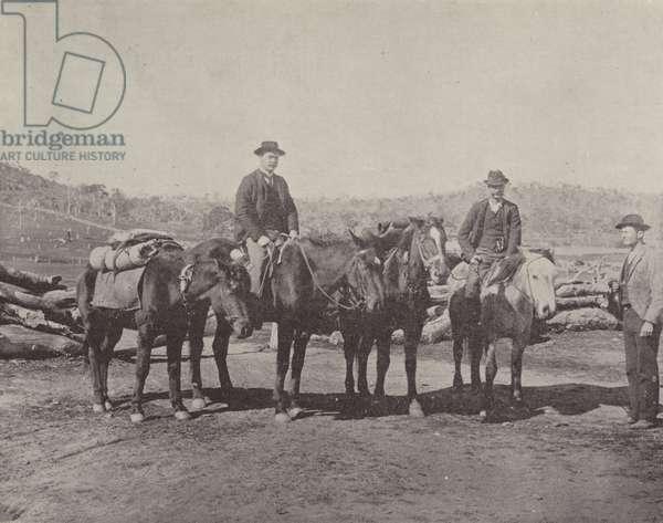 Shearers en route (b/w photo)