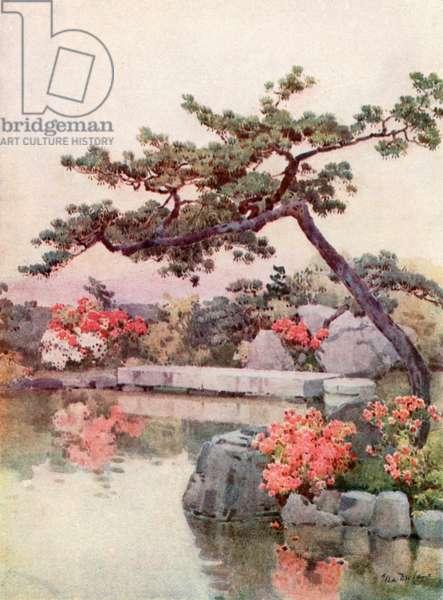 Azaleas in a Kyoto Garden (colour litho)
