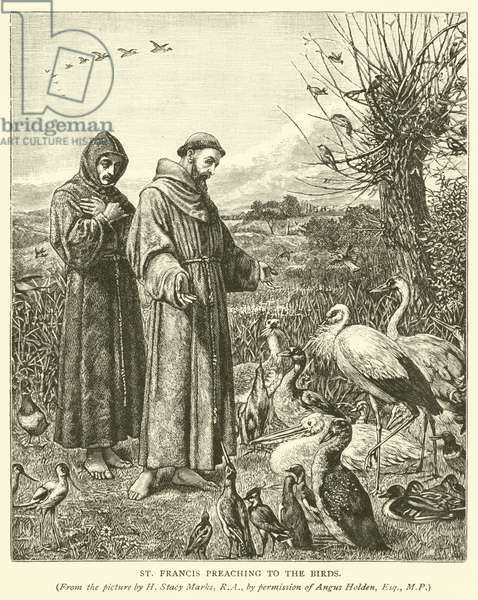 St Francis preaching to the birds (engraving)