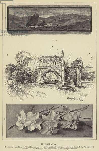 Illustration (engraving)