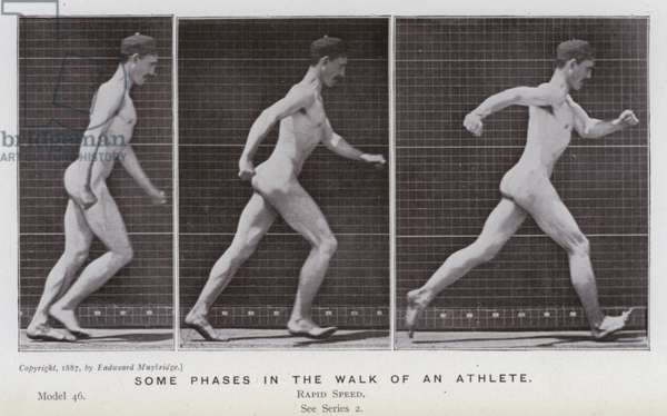 The Human Figure in Motion: Some phases in the walk of an athlete (b/w photo)