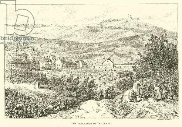 The Vineyards of Verzenay (engraving)