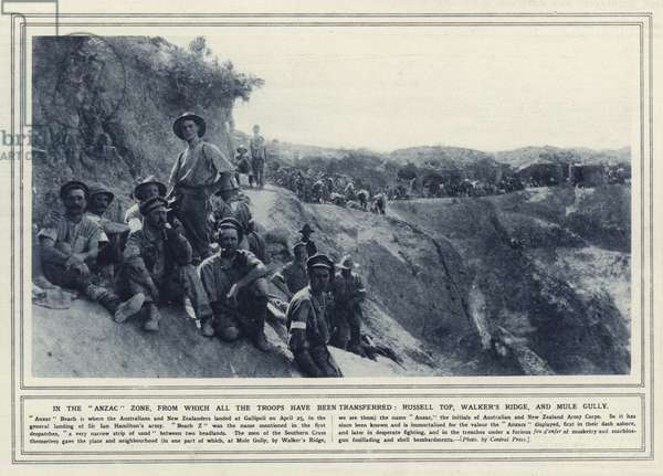 In the Anzac zone, from which all the troops have been transferred, Russell Top, Walker's Ridge, and Mule Gully (b/w photo)