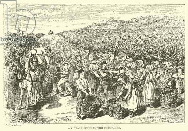 A Vintage Scene in the Champagne (engraving)
