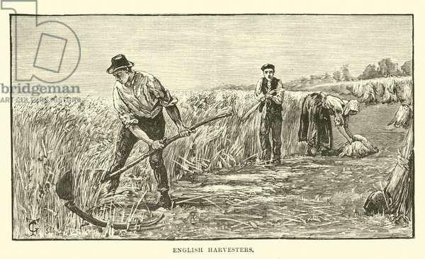 English harvesters (engraving)