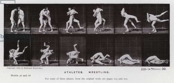 The Human Figure in Motion: Athletes, Wrestling (b/w photo)