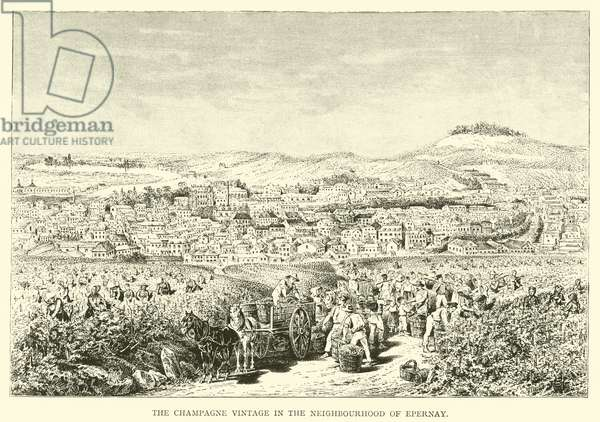 The Champagne Vintage in the Neighbourhood of Epernay (engraving)