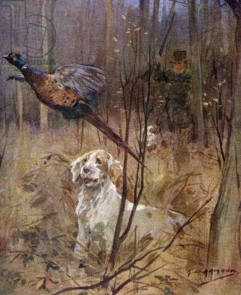 Pheasant shooting old style (colour litho)