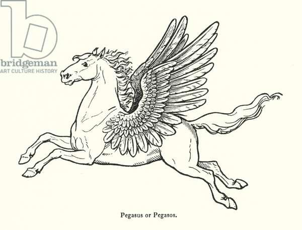 Pegasus or Pegasos (engraving)