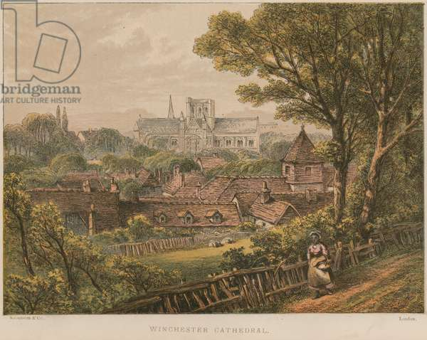 Winchester Cathedral (coloured engraving)