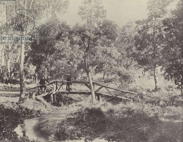 A Rustic Bridge, Ballarat Water Reserve (b/w photo)