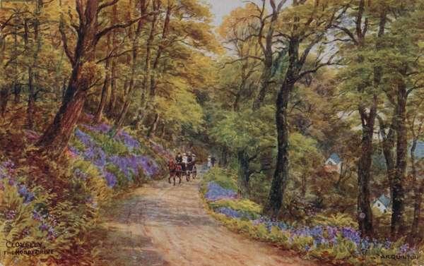 Hobby Drive, Clovelly (colour litho)