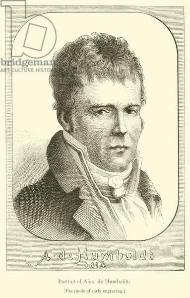 Portrait of Alexander de Humboldt (engraving)