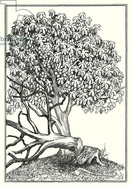 Illustration for The Sermon On The Mount (engraving)
