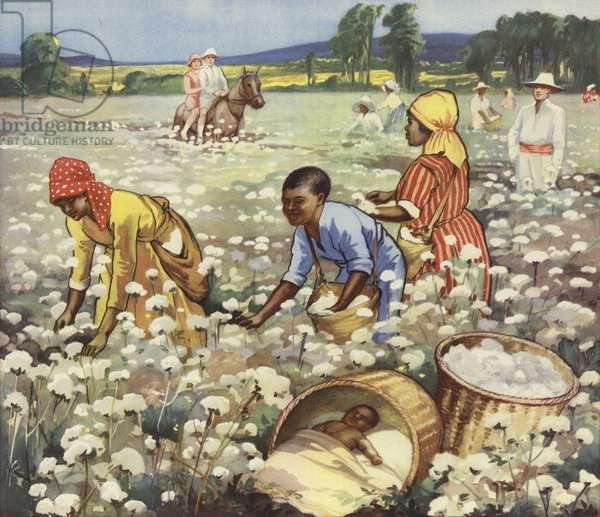 Picking cotton on an American plantation (colour litho)
