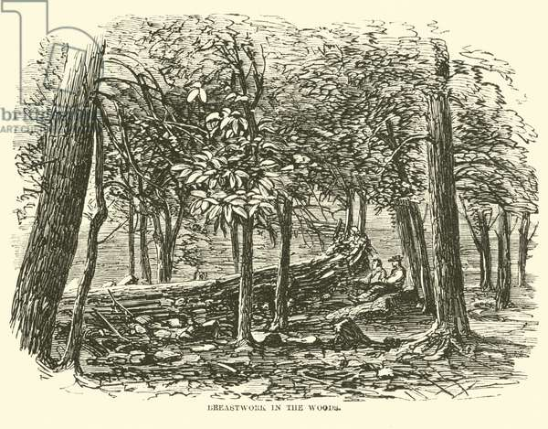 Breastwork in the woods, July 1863 (engraving)