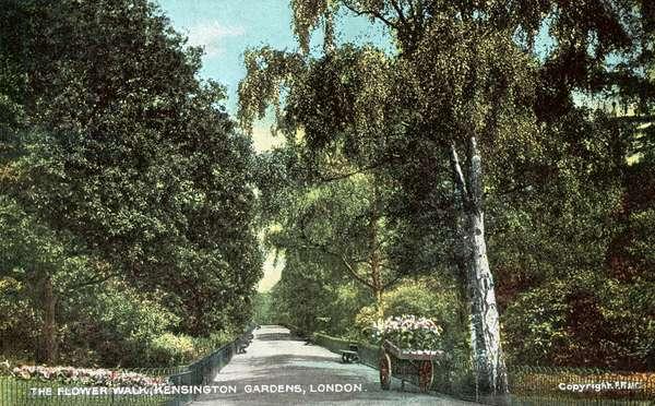 The Flower Walk, Kensington Gardens, London (colour photo)