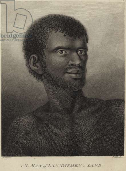 A man of Van Diemen's Land (engraving)