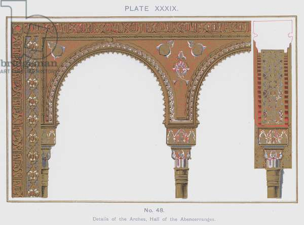 Details of the Arches, Hall of the Abencerranges (colour litho)