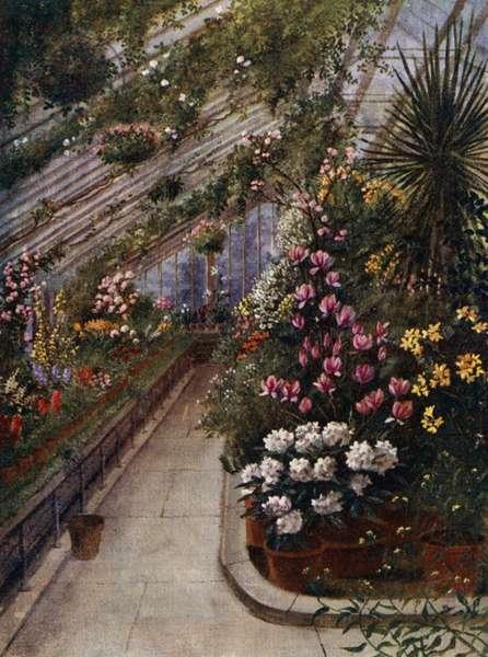 Kew Gardens: The Green House (colour litho)