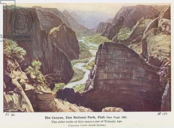 The Canyon, Zion National Park, Utah (photo)