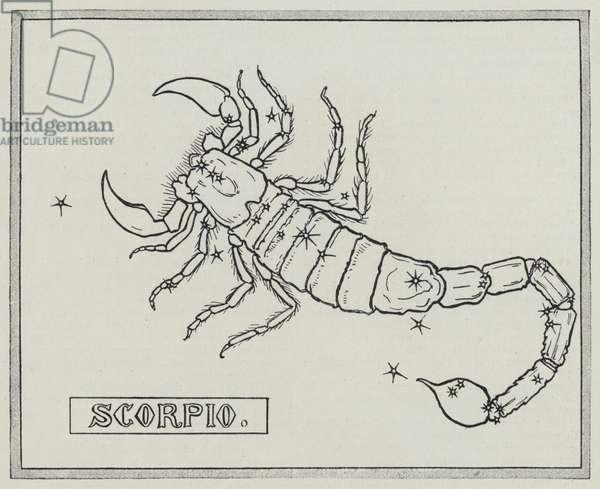 Signs of the zodiac: Scorpio (engraving)
