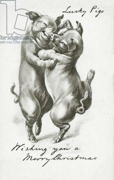 Dancing pigs, Christmas greetings card (litho)