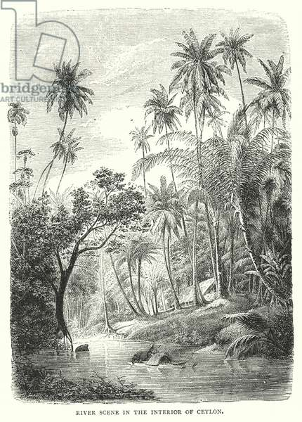 River Scene in the Interior of Ceylon (engraving)