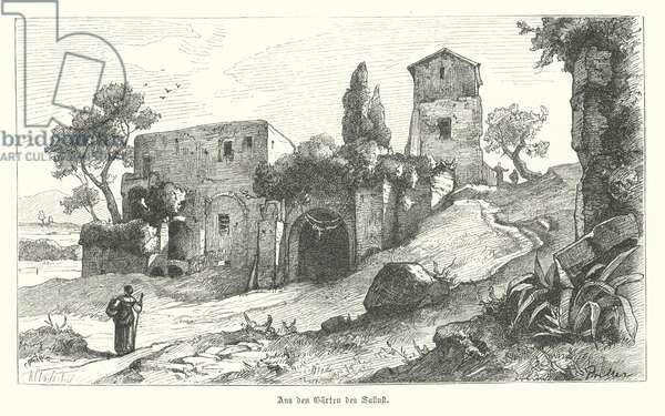 Gardens of Sallust, Rome (engraving)