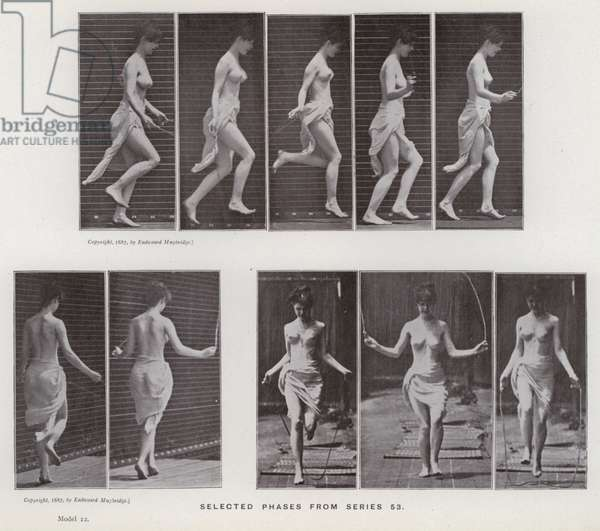 The Human Figure in Motion: Selected phases from series 53 (b/w photo)