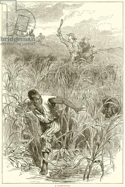 A Slave-Hunt (engraving)
