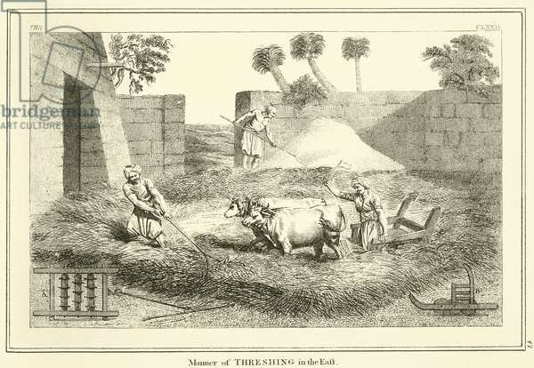 Manner of Threshing in the East (engraving)