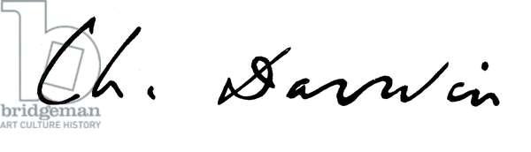 Charles Darwin, signature (litho)