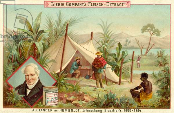Alexander von Humboldt's expedition to South America, 1800-1804 (chromolitho)