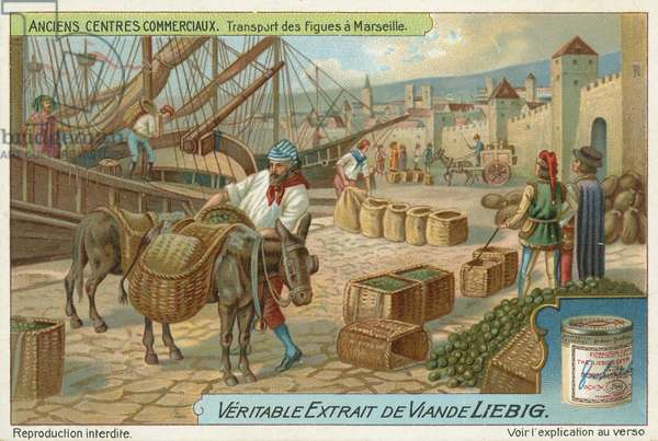 Transport of figs at Marseille