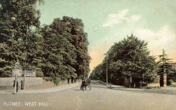 Putney, West Hill (colour photo)