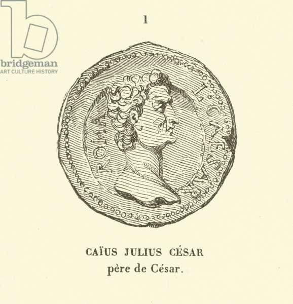 Gaius Julius Caesar, father of Julius Caesar (engraving)