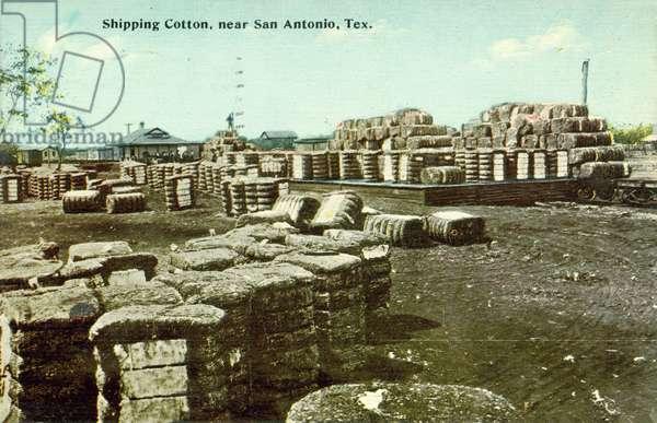 Shipping Cotton, San Antonio, Texas, USA (colour photo)