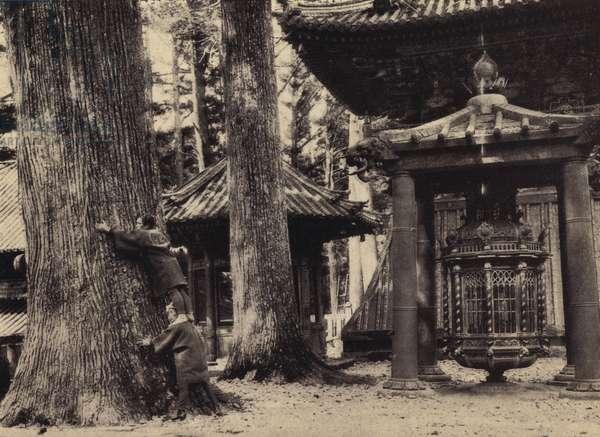 Toshogu, Nikko, Revolving Lantern (b/w photo)