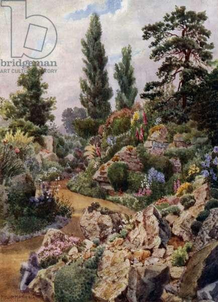 Kew Gardens: In the Rock Garden (colour litho)