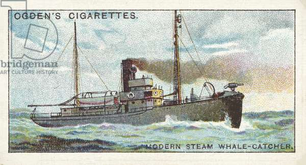 Whaling, Modern Steam Whale-Catcher (chromolitho)