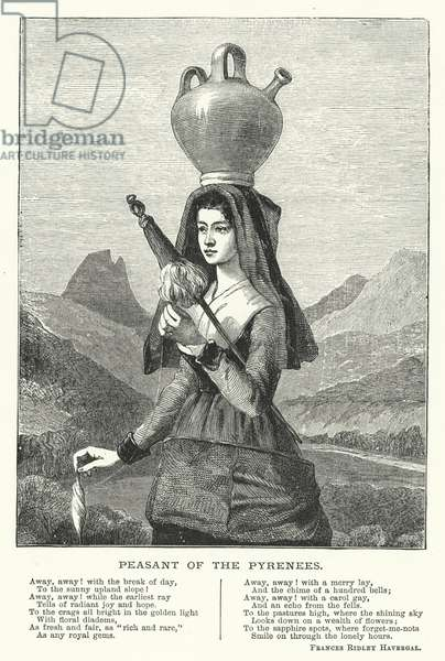 Peasant of the Pyrenees (engraving)