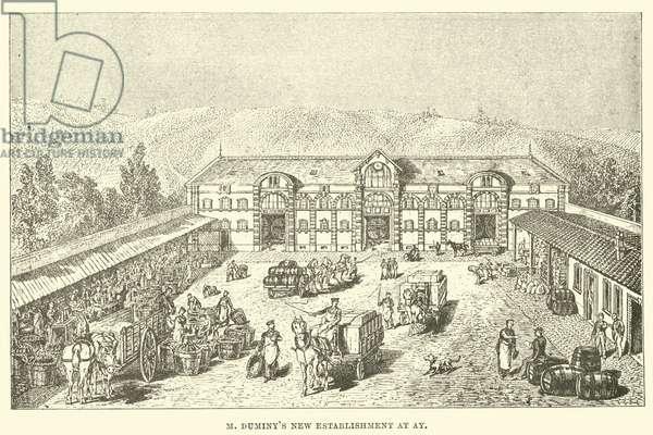 M Duminy's new establishment at Ay (engraving)