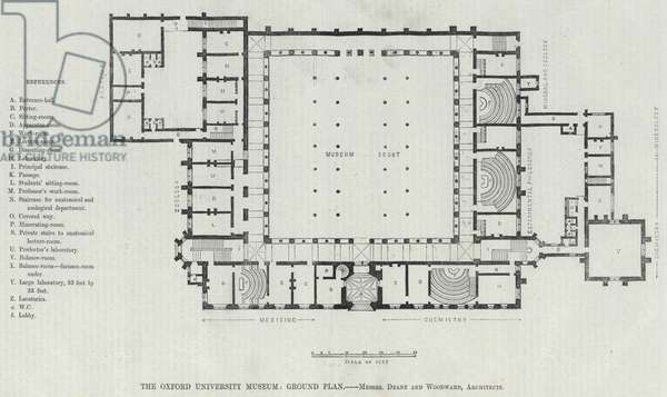 The Oxford University Museum, Ground Plan (engraving)