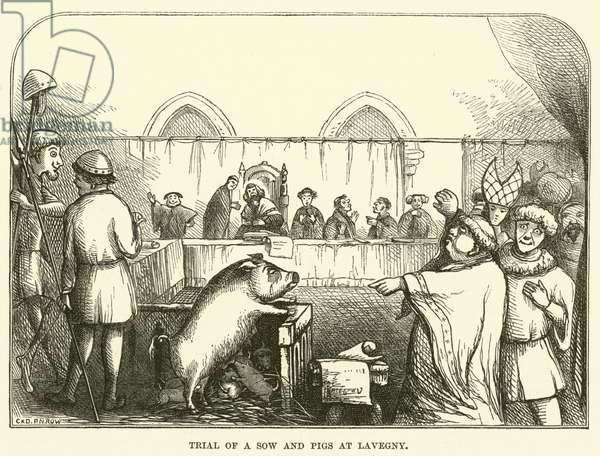 Trial of a sow and pigs at Lavegny (engraving)