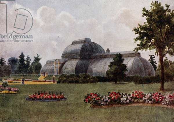 Kew Gardens: The Palm House (colour litho)