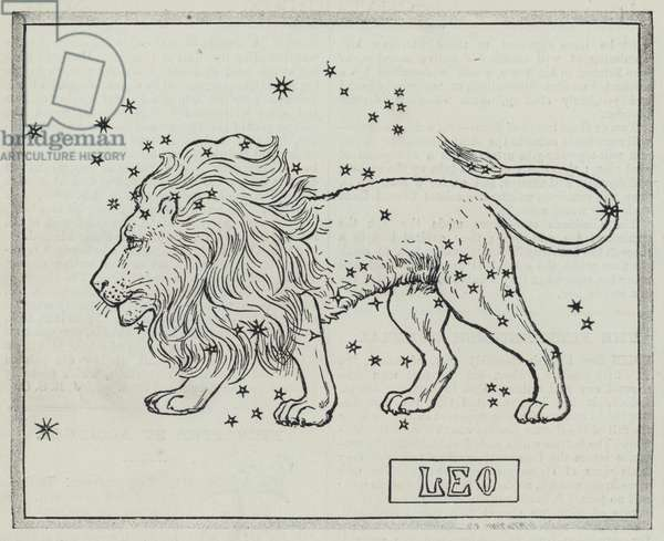 Signs of the zodiac: Leo (engraving)