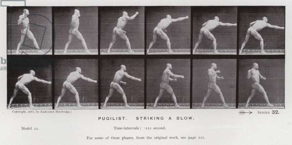 The Human Figure in Motion: Pugilist, striking a blow (b/w photo)
