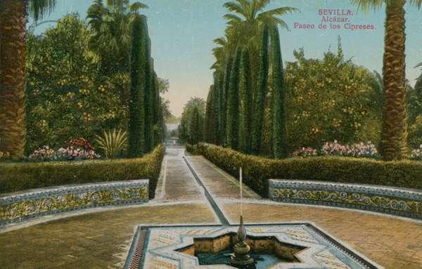 Cypress Walk, Alcazar, in Seville, Spain.  Postcard sent in 1913.